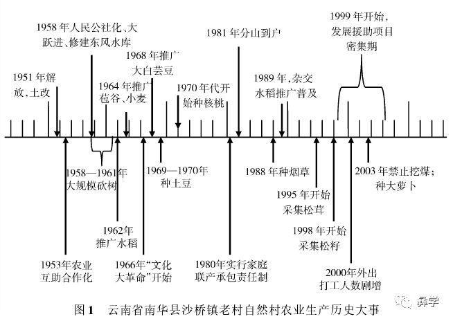 【刘金龙 张明慧 张仁化】彝族生计、文化与林业传统知识:以云南省南华县为例
