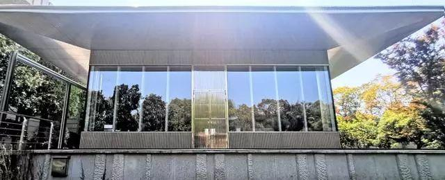 科技与艺术的巅峰之作,世界第一巨幕亮相上海